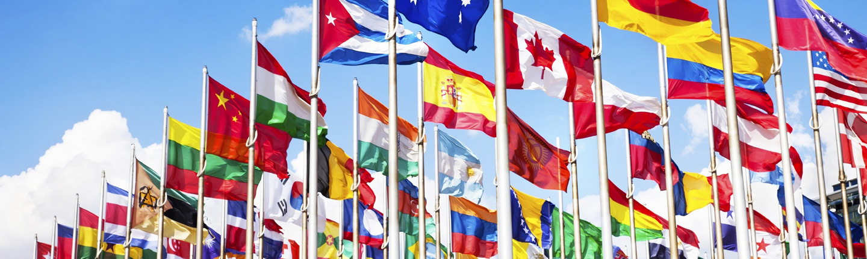 Innovative Internationally Focused Firms