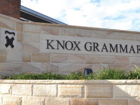 Knox Grammar Abuse Lawyer Drugs